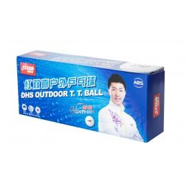 DHS D40+ Outdoor 10 Balls (seam)